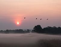 Sonnenaufgang im Odertal