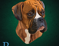 Digitally painted Boxer dog in Photoshop CC