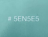 5EN5E5