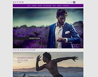 Website Design, coding.