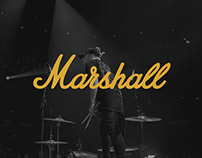 Marshall Products - Web Concept