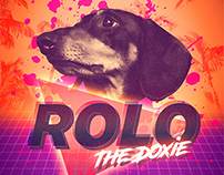 Rolo The Doxie Poster