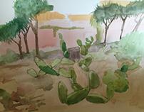Desert Garden Study