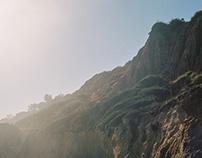 Malibu Landscapes
