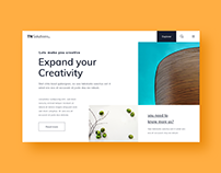 UI/UX Website Design (TN Solution.)
