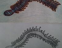 Fractal Worm 2D