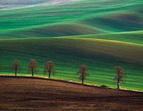 Moravian Lines