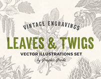 Leaves & Twigs – Vintage Illustrations