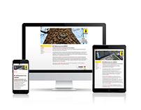 iSiMAN - website