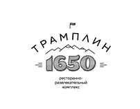 Tramplin-1650