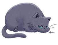 Chubby Grumpy Kitties
