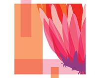 Fiore - Flower