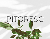 Pitoresc Brand Identity