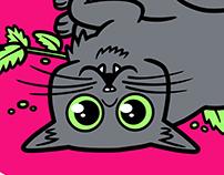 Catnip Life