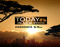 Today In New York - morning news promotions