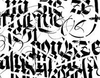 Calligraphic performance for 10 Plaster (Toruń)