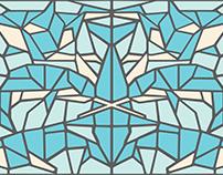 Cetacea illustration