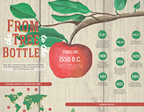 Hard Cider Infographic