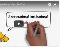 Vídeo 'Acceleradora vs Incubadora'