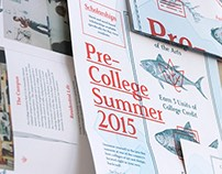 CCA Pre-College 2015