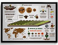 Infografia Deforestación