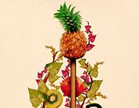 Ilustraciones Feria Agricultura (Pitch)