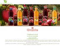 BioAgroFood.com website