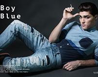 Blue Boy, Client Style Guide U.S.