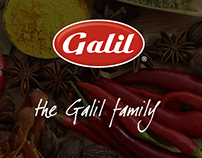 Galil Website Redesign