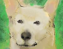 Cover artwork of 'Honey, the Dixie Dingo Dog'