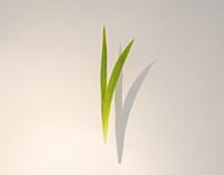 tabula rasa_Indicator - Contemporary art gallery