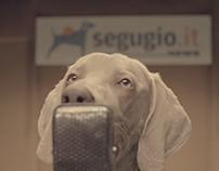 Segugio.it Radio 2016