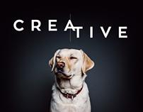 Digital Agency Concept
