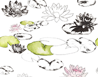 Lily Pads and Lotus Flowers