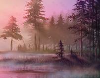 landscape (colour and light study)