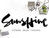 Sunshine, Stylish Brush Font with Alternative Letters