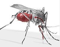 Zika's explosive spread