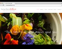 Website   Wellness Coach