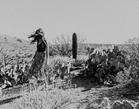 Cactus Kiss