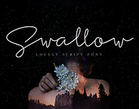 Swallow lovely script font