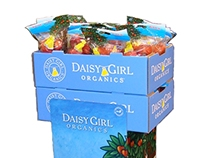 Daisy Girl two box shipper