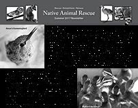 Native Animal Rescue newsletter (Summer 2017)