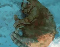 Milenko the cat sleeping