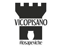 Brand Identity of Vicopisano