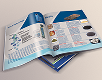 Fast co. cataloge
