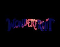 Wonderfruit Festival Video Project