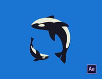 Orca Family Animation