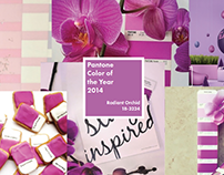 Pantone Color of the Year - Booklet Concept