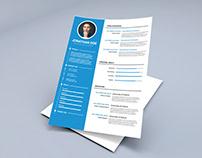 Free Timeline CV Template