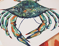 Blue Crabs Watercolor Painting